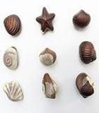 Категория для шоколада из Европы